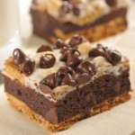 Gotta Try S'more Brownies