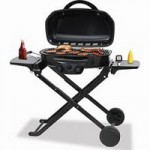 Barbequing on a Budget – Good For You and Your Wallet!