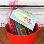 Stay Cool This Summer – Fun Gift Idea