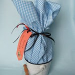 DIY Easter Bunny Survival Kits
