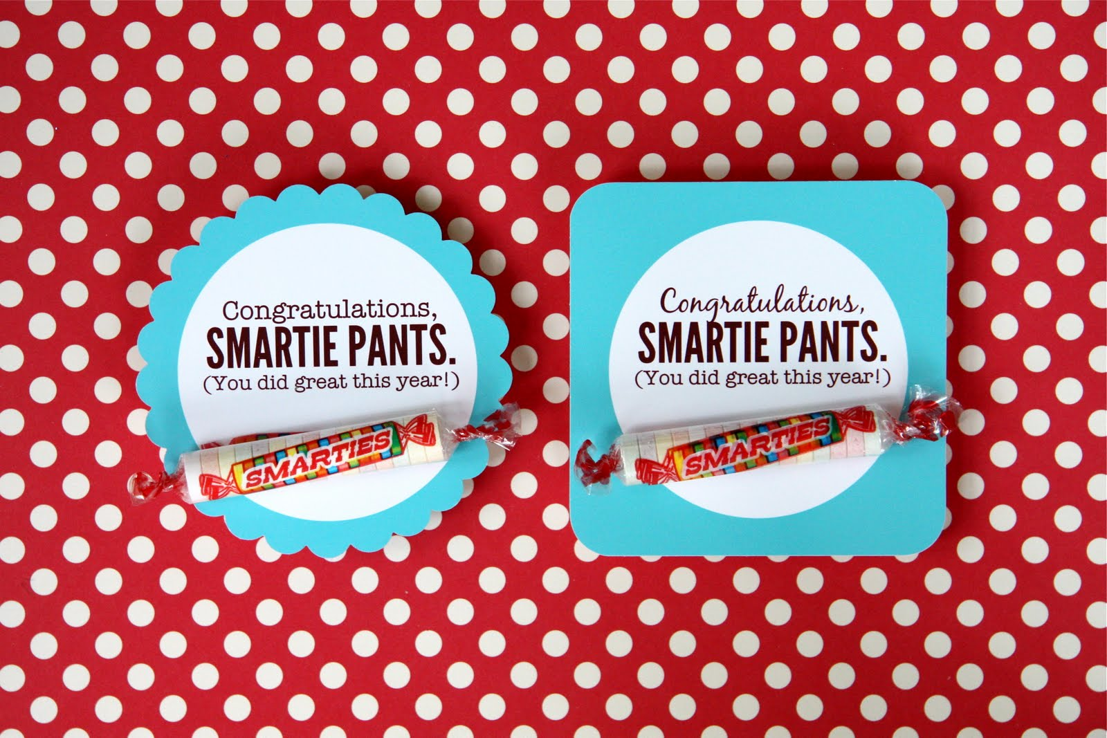Smarties Pants - Viewing Gallery