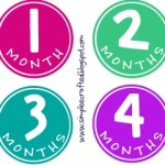 Free Monthly Picture Printables
