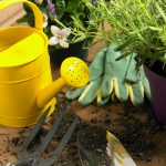 """""""Gardening Supplies: What to Buy Online for Less"""""""