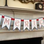 Free America Banner