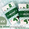 mint teacher 1