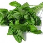 MOM Tip: Keeping Basil Fresh