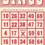 Free Bingo Card Printables