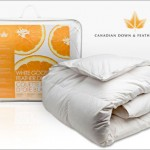 Today's Christmas Shopping Deal: Goose feather duvet from Canadian Down and Feather Company $44.00