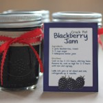 Blackberry Jam in the Crock Pot