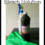 MOM Tip: Simple Homemade Bleach Solution