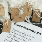 Free Final Survivals Kit Gift Idea and Printable