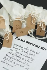 college-finals-survival-kit-gift1