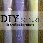 "Mom Tip: DIY ""Go Gurt"""