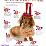 MOM Tip: 4th of July Pet Safety