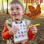 Free Fall Leaf Bingo Printable