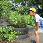 5 Steps To A Child-Friendly Garden