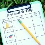 Free Bird Watch Tally Sheet Printable