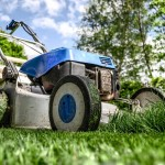 The Most Common Mistakes People Make With Gardening