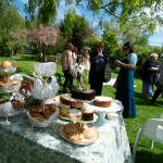 Make Your Garden The Perfect Place For Your Next Party