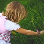 Create A Gorgeous Garden For Kids to Sow, Grow And Play
