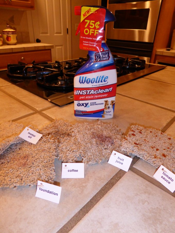 Tackle Tough Stains With Woolite Instaclean Stain Remover