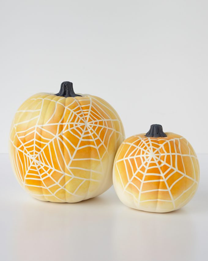 spider-web-pumpkin-beauty-1-1014_vert