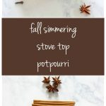 MOM Tip: Fall Simmering Stove Top Potpourri