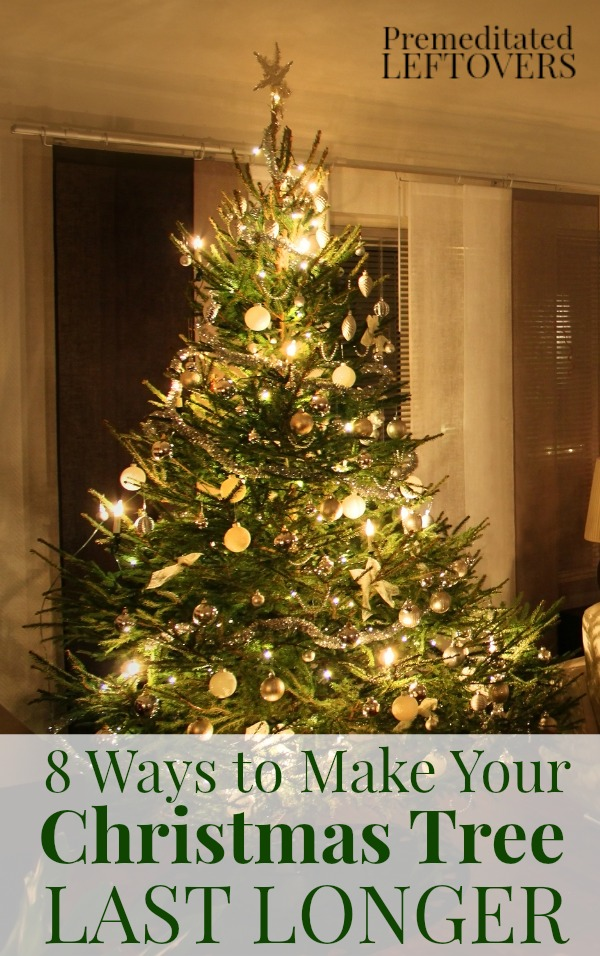 8 ways to make your christmas tree last longer 24 7 moms - Make christmas tree last longer ...
