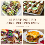 15 Best Pulled Pork Recipes Ever