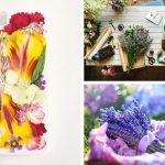 Pressed Flower Crafts That Will Blow You Away