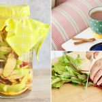 9 Easy Ways to Stop Food Waste from Destroying Your Budget