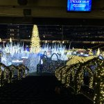 Visit Enchant Christmas Seattle before the lights go out ……..