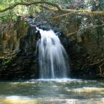 5 Must Visit Places In Hawaii